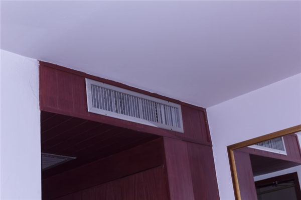 Is There Mold in My Home's Ductwork?