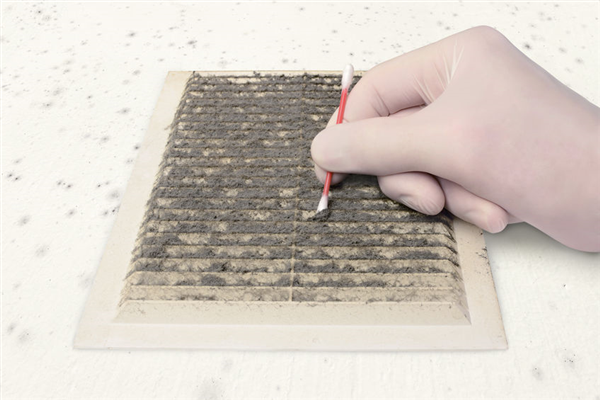Three Signs Mold May Be Present in Your Air Ducts
