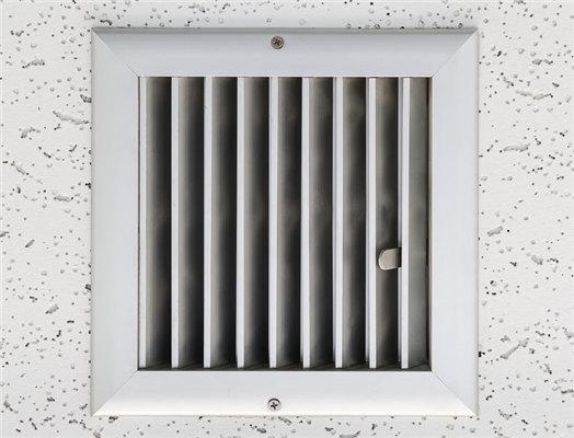 Could There Be Mold in Your Ducts