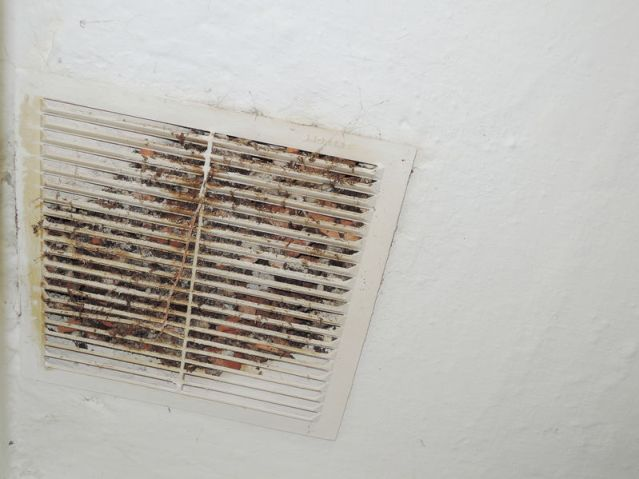Does Your Ductwork Have Mold? 4 Ways to Tell
