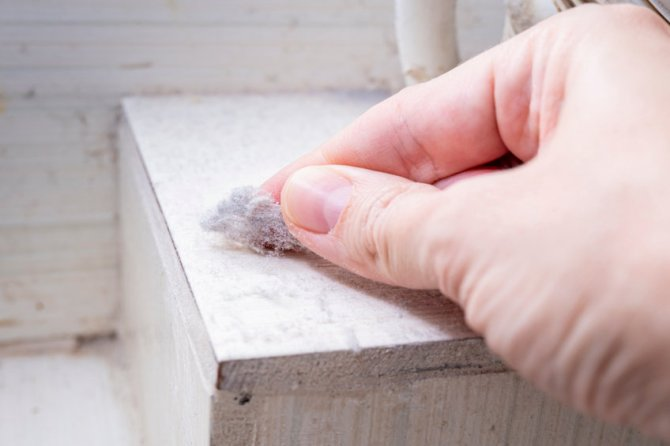 Your Seasonal Guide to Tackling Indoor Dust Accumulation