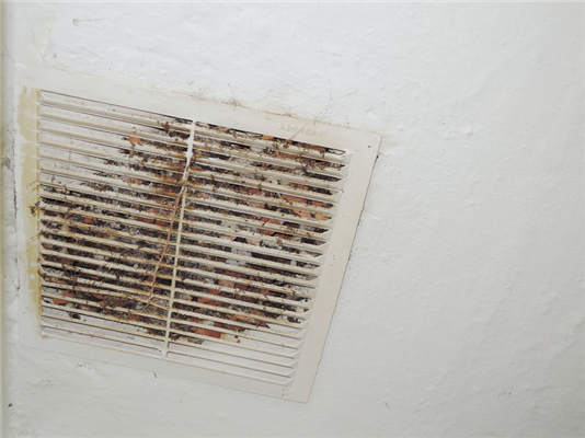 5 Hazardous Items That Build Up Inside Your Ductwork